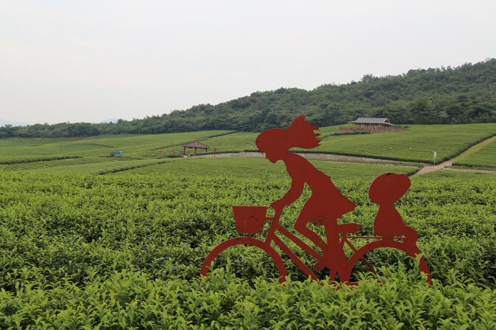 宜兴1日游(团氿风景区-陶瓷博物馆-龙池山自行车公园)