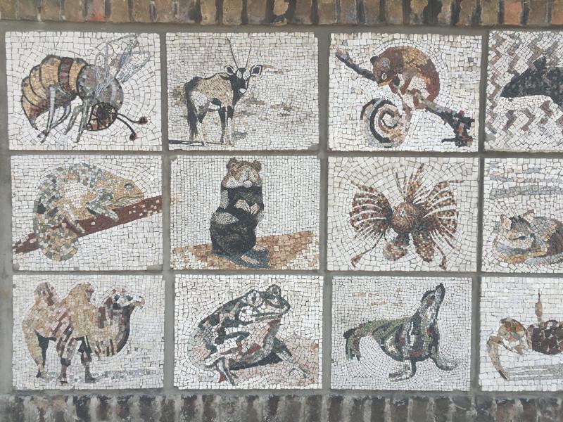 动物园外墙马赛克贴画图片