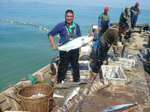 日照蓝妮湾渔家