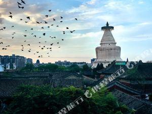 北京白塔之光国际青年旅舍