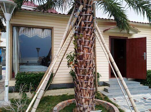 关于深圳马尔代夫沙滩海景小木屋