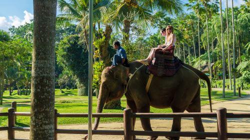 印度尼西亚巴厘岛7日5晚私家团(5钻)·【亲子游】野生动物园·2晚独栋