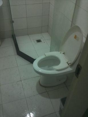 老式马桶厕所板结构图