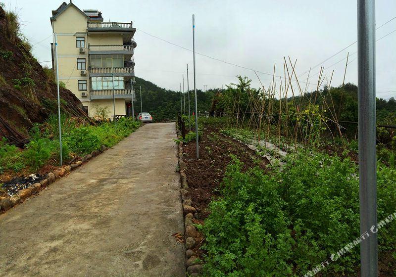 千岛湖志龙农庄