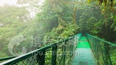 蒙特维多云雾森林保护区
