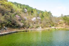 木兰湖-武汉-尊敬的会员
