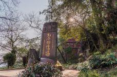 青城山-青城山-C_image