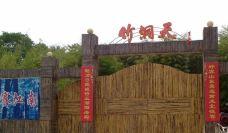 竹洞天风景区-日照-盲龟_浮木